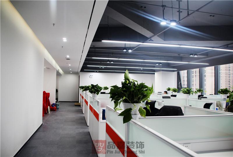 办公室公共办公区装修实景图